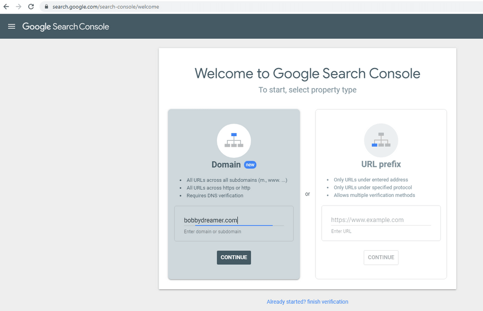 Google Search Console - Enter site name